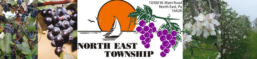 North East Township